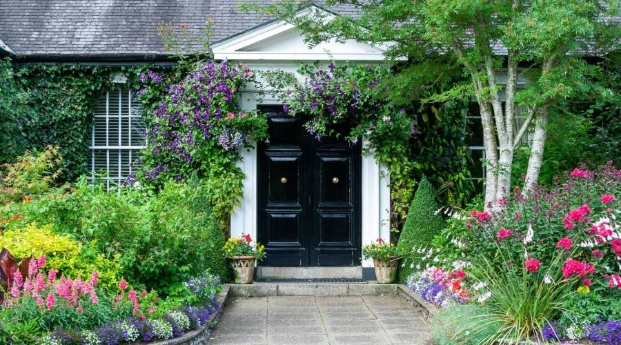 garden blooms in front of a house with a black door