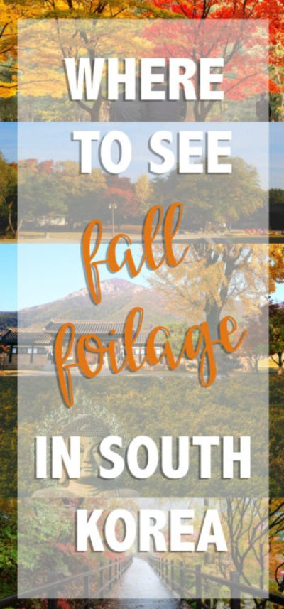 best-places-to-see-fall-foliage-sitepin