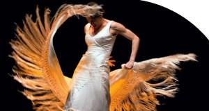 Flamenco dancer (female)