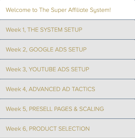 Super Affiliate System 3.0, 6 weeks course