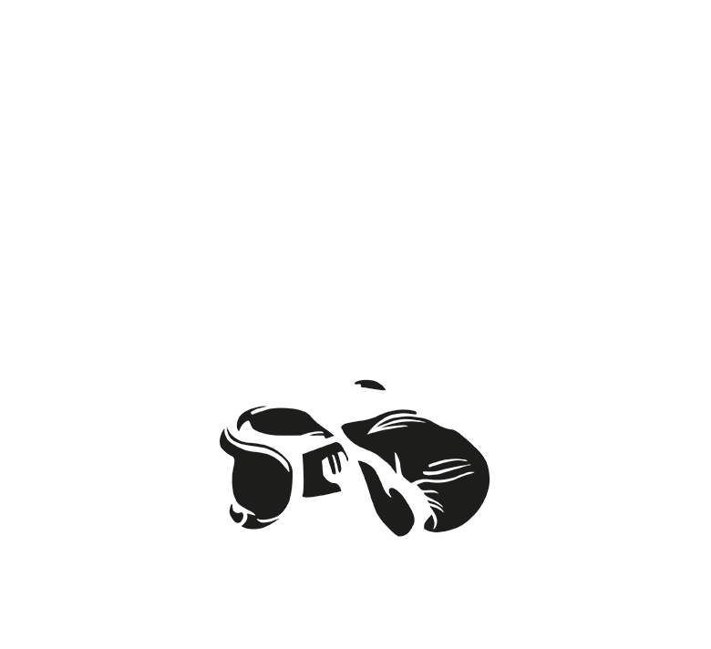 The Ring Boxing Club München