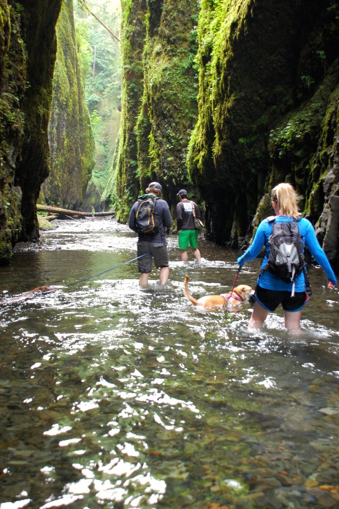 Oneonta Gorge | Columbia River Gorge | theringers.co