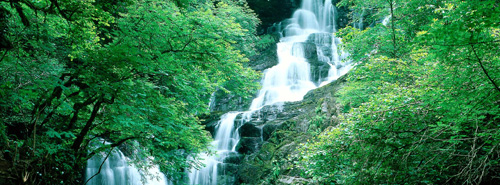 Fall Horse Wallpaper Torc Waterfall On The Ring Of Kerry Tour