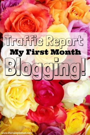 Traffic Report My first month Blogging! What works what doesn't. The Rising Damsel