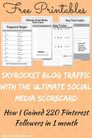 Skyrocket your Traffic With the Ultimate Social Media Scorecard. The Rising Damsel