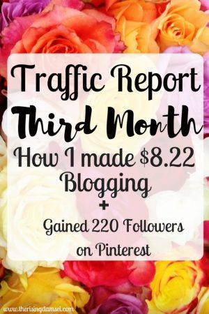 How I made $8.22 My Third Month Blogging. The Rising Damsel #blogger #incomereport #traffic #tips #help #blogsuccess #socialmedia