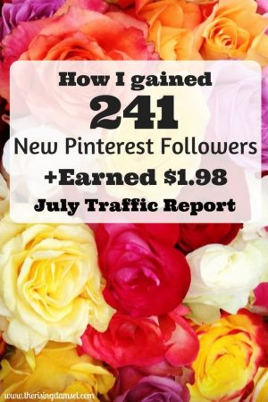 How I Gained 241 New Pinterest Followers Traffic Report. The Rising Damsel