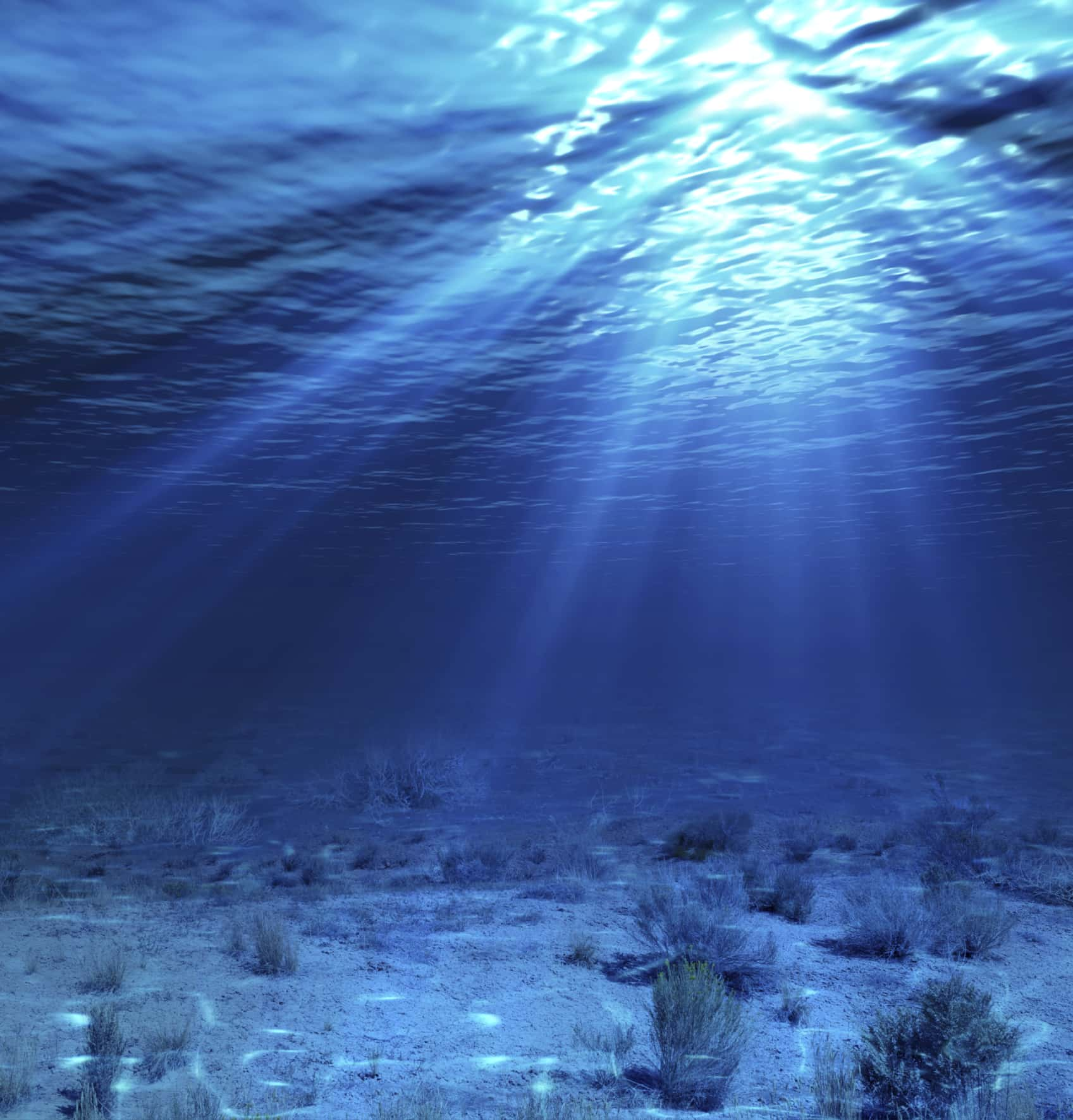 Is Deep Sea Mining One Step Closer To Reality