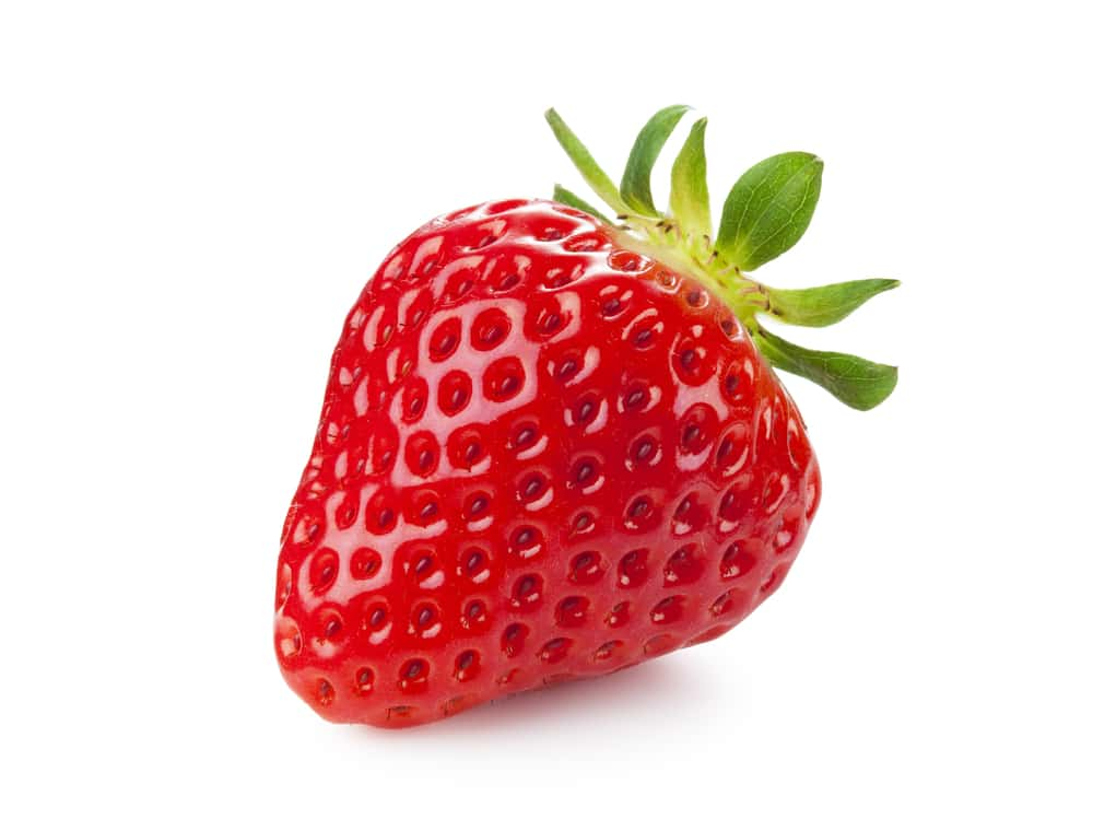 What Rot Strawberry Proteomics And The Art Of Staying Fresh