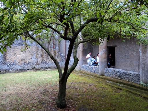 garden courtyard in Pompeii, Italy