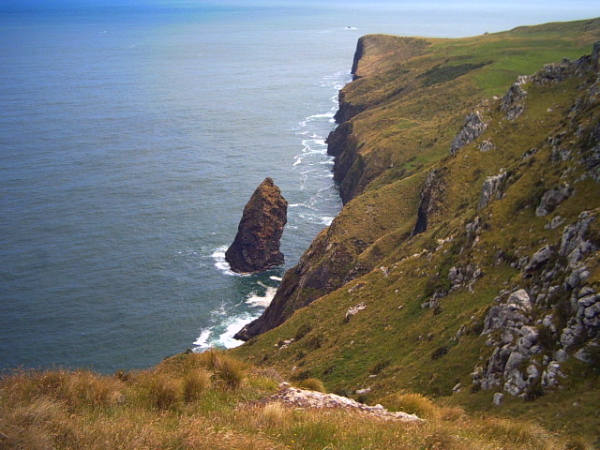 Cliffs on the Otago Peninsula, Dunedin, New Zealand