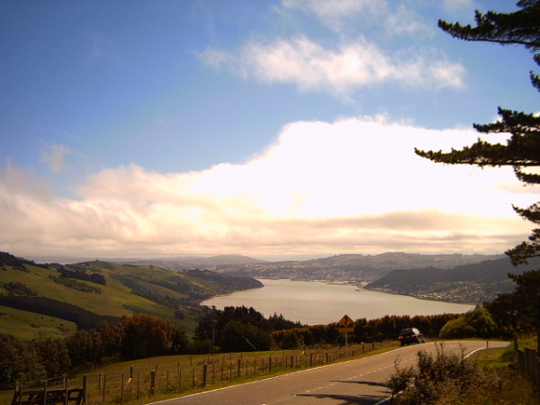 View of an inlet on the Otago Peninsula, Dunedin, New Zealand