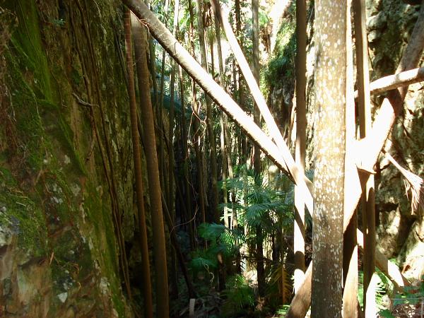 A gorge at Mt Greville in Queensland, Australia