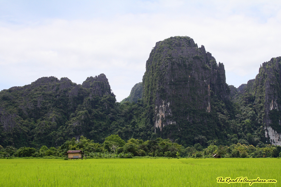 rice fields and limestone karsts in Vang Vieng, Laos
