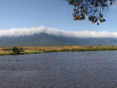 Panorama of a hippo pool in Ngorongoro Crater, Tanzania