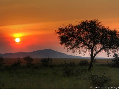 Beautiful sunset in Serengeti National Park, Tanzania