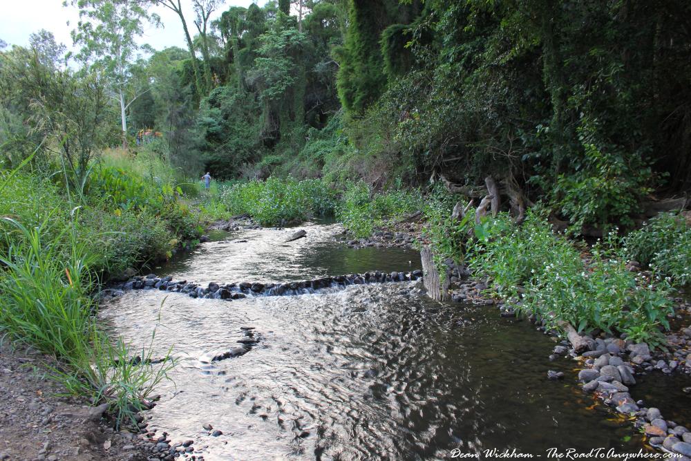 Canungra Creek in Canungra, Australia