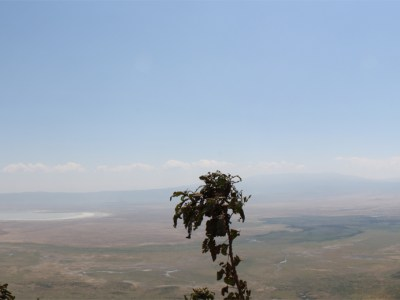 Panoramic View of Ngorongoro Crater in Tanzania