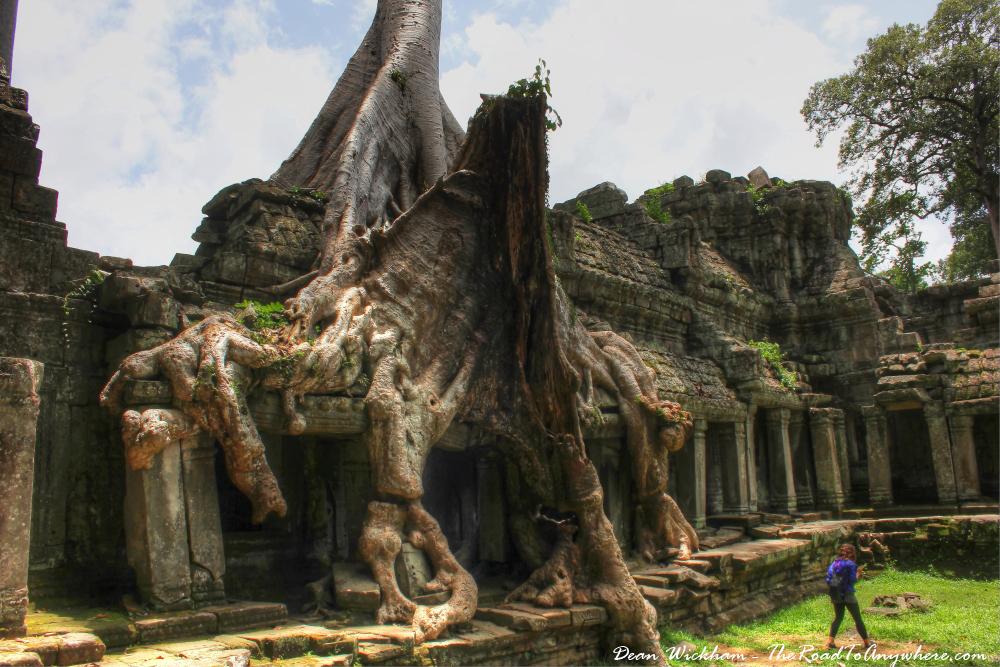 Tree covered ruins at Preah Khan in Angkor, Cambodia