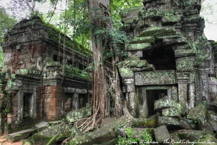 Ancient jungle ruins at Ta Phrom in Angkor, Cambodia