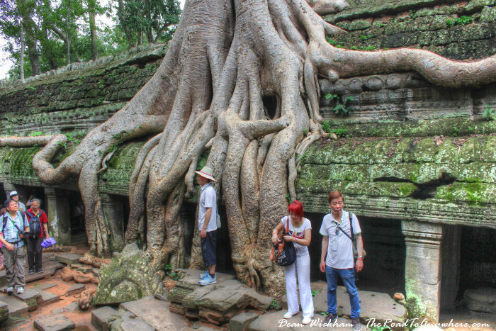 Tree covered ruins at Ta Phrom in Angkor, Cambodia