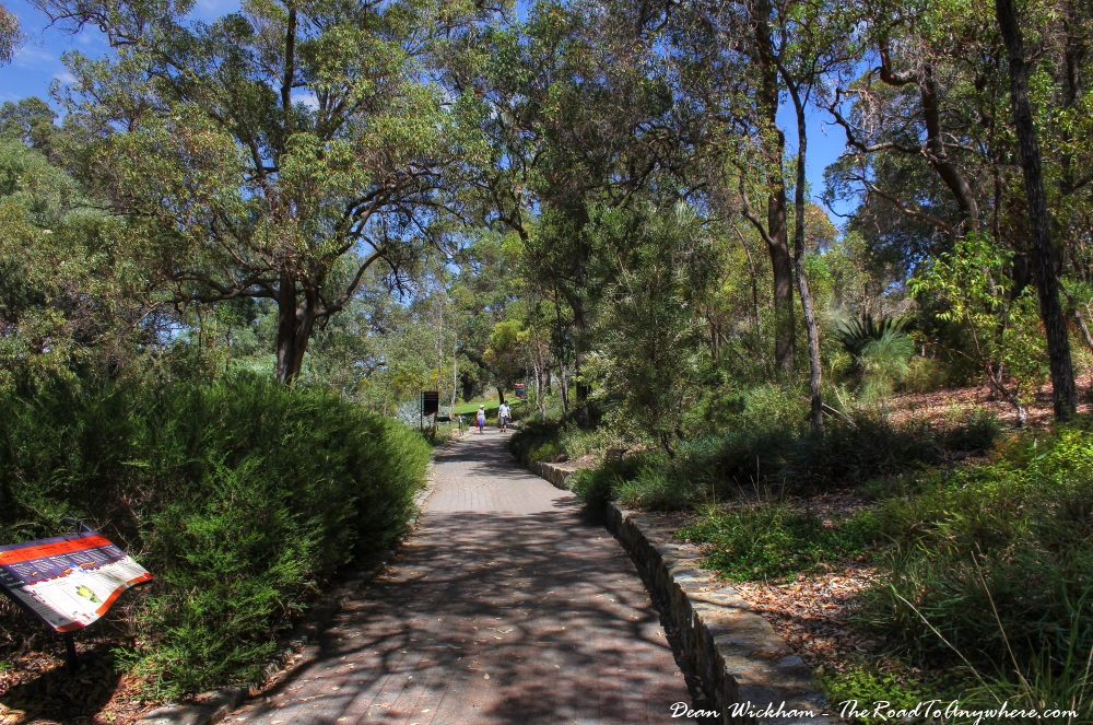 Bush pathway in Kings Park in Perth, Western Australia