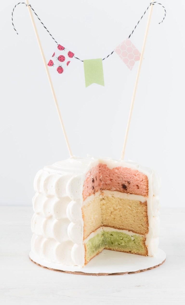 Watermelon Inspired Layer Cake