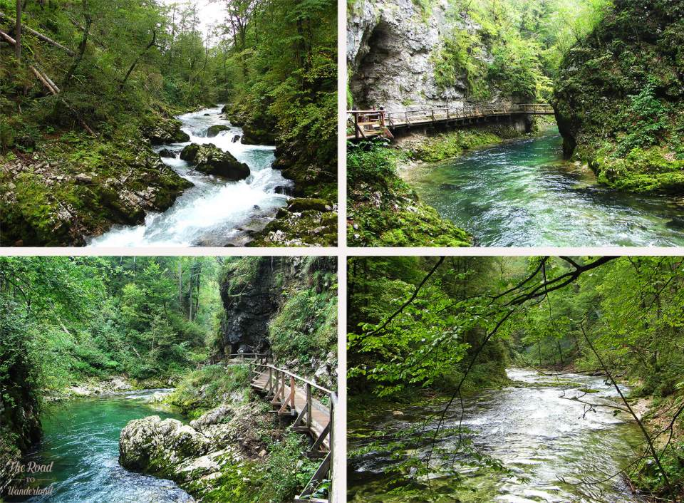 Pictures from the walk through Vintgar Gorge