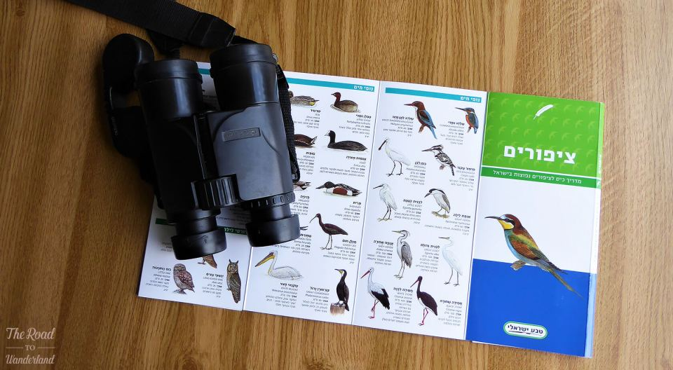 Israel bird guide and binoculars