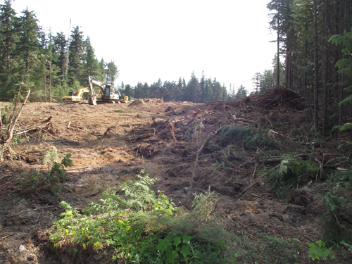 Telus site clearing dome creek tower