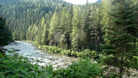Fraser Headwaters cable car goat river (3)