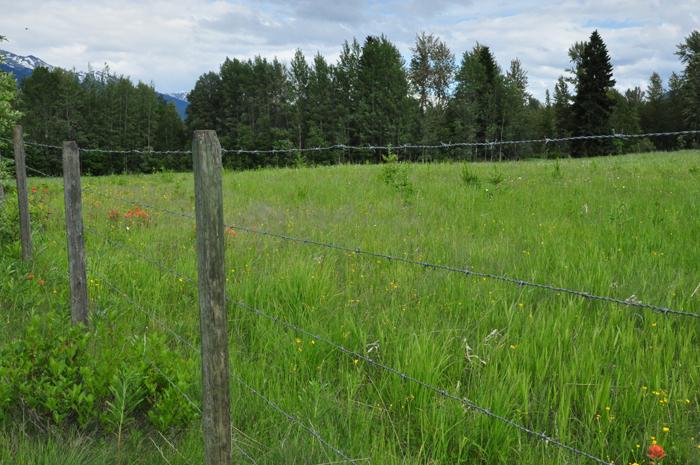Robson Valley Farmland