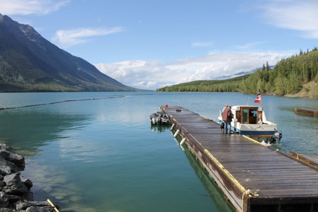 Valemount Marina Fishing Derby 2014 kinbasket lake (6)