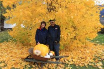 Fall harvest osadchuk pumpkin mushroom valemount (12)