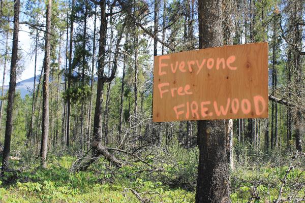 Valemount's self-serve firewood?