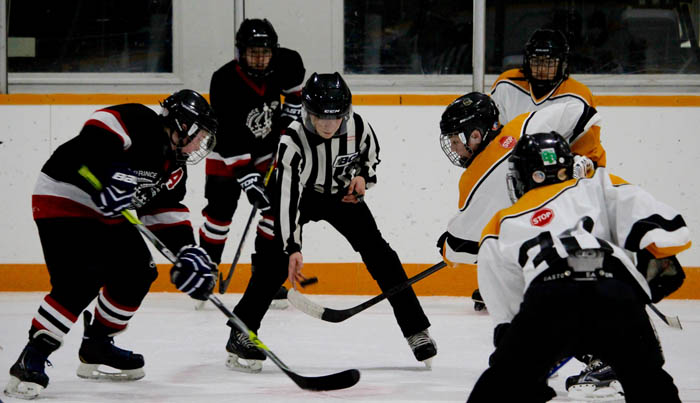 Hockey season winds down; awards handed out