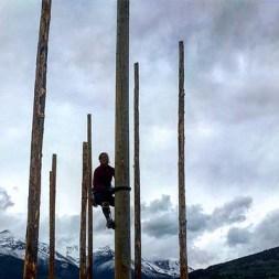 Jean Ann pole climb pic (1)