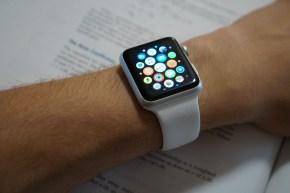 Six Month Apple Watch Reflection