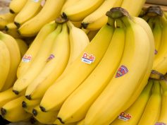 bananav3