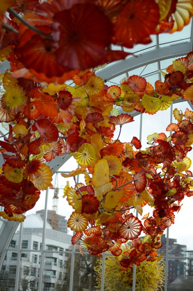 chihuly-garden-and-glass-seattle-19
