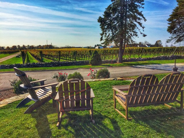 Newport Vineyards in Newport Rhode Island