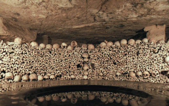 Skeletons from the Parisian Catacombs
