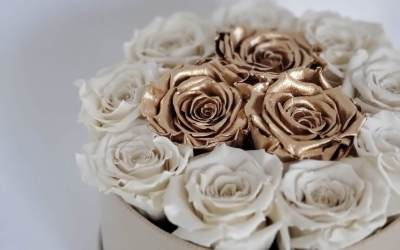 The Latest Floral Trend | Preserved Roses