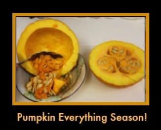 pumpkin everything season
