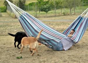 russ breaks hammock edited