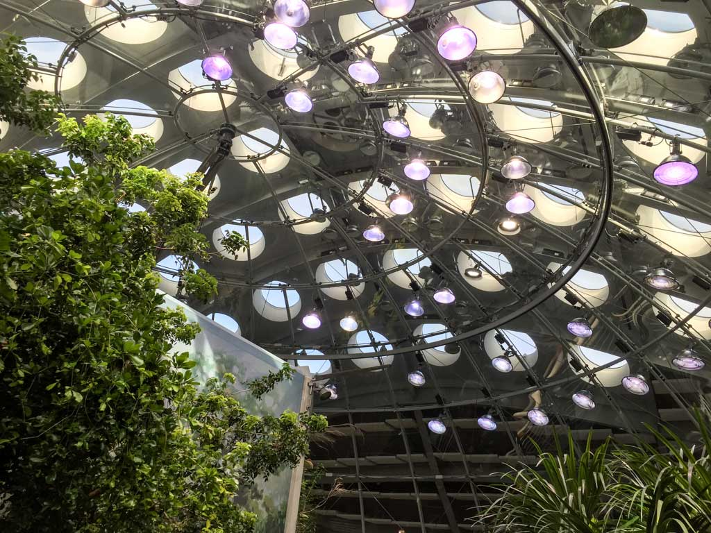 human-made rainforest ecosystem under a massive dome.