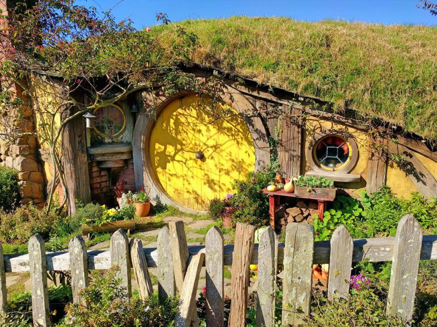The Hobbiton Movie set - a day trip from Auckland