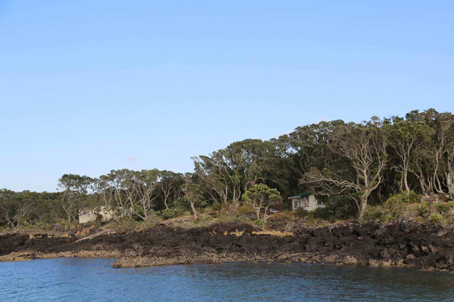 Auckland day trips to Rangitoto Island