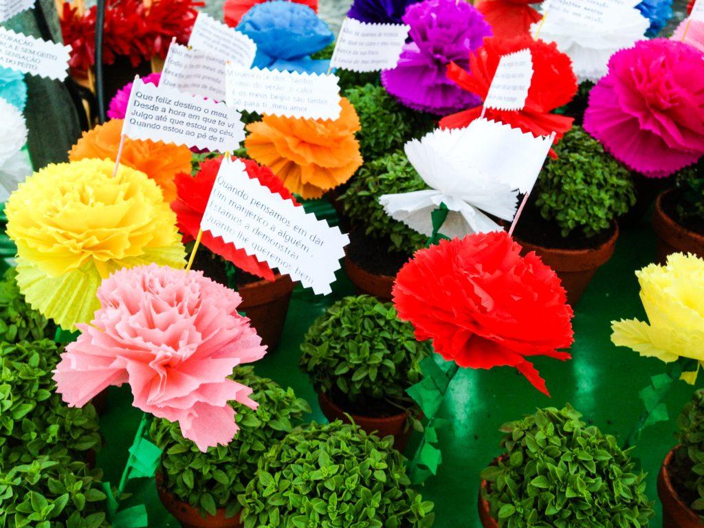 Basil in flower pots