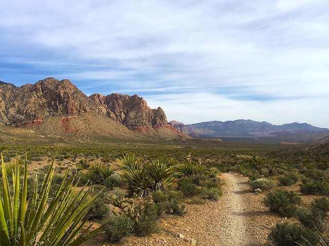 The History of Modern Trail Running | the running mate | running advice